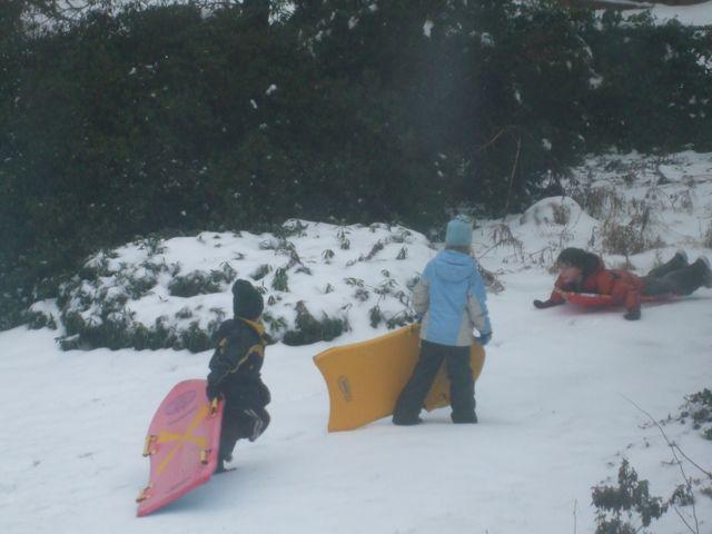 sledding2022009
